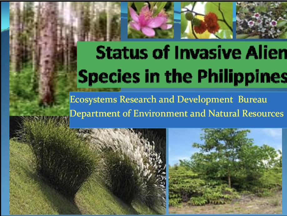 Status of Invasive Alien Species in the Philippines - Asia